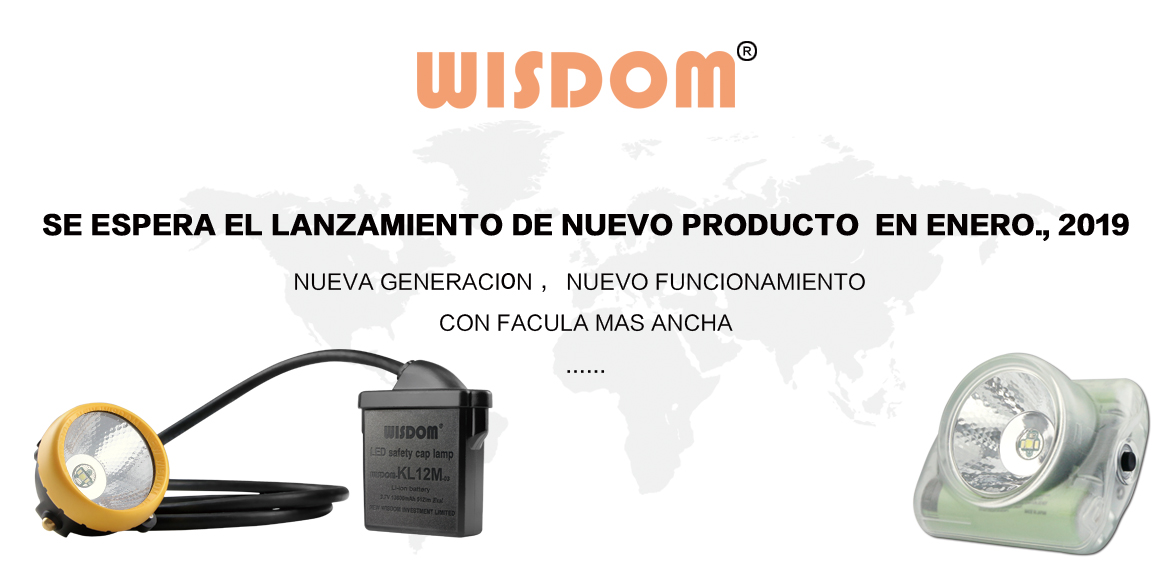 WISDOM new product will be release in Demcenber