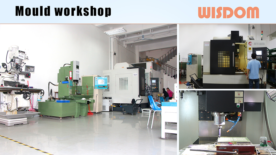 WISDOM mould workshop