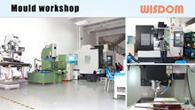 WISDOM Slide: Mould Workshop